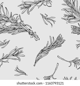 Vector seamless pattern with rosemary hand drawn elements. Editable set for packaging design with rosemary branches.