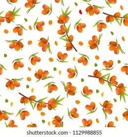Vector seamless pattern with sea buckthorn and leaves on white background. Perfect for textile, covers, wallpapers and other design works