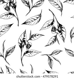 Vector seamless pattern with tea leaves. Hand drawn botanical illustration in vintage style for print, fabric, wrapping, web page and other seamless design. Black on white.