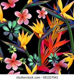 Vector seamless pattern  of tropical  flowers, leaves, vines:  Strelitzia, Plumeria, South America, Central Africa, Southeast Asia and Australia. Monsoon forests, Mangroves.For textiles