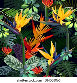 Vector seamless pattern  of tropical  flowers, leaves, vines:  Strelitzia, Plumeria, South America, Central Africa, Southeast Asia and Australia Monsoon forests, Mangroves.For textiles