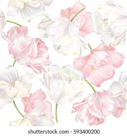 Vector seamless pattern with white and pink tulip flowers. Spring tender design for natural cosmetics, perfume, florist shop. Can be used as greeting or wedding background. Best for wrapping paper
