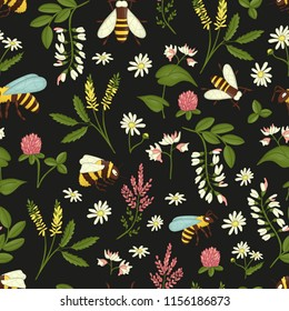 Vector seamless pattern of wild flowers, bees and bumblebees. Repeating background with meadow or field insects, acacia,heather,camomile,buckwheat,clover,melilot