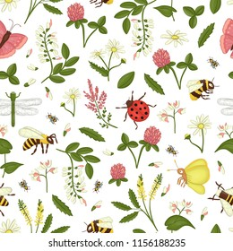 Vector seamless pattern of wild flowers, bee,  bumblebee, dragonfly, ladybug, moth,butterfly. Repeating background with meadow or field insects, acacia,heather,camomile,buckwheat,clover,melilot