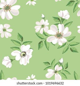 Vector seamless pattern of wild rose flowers.