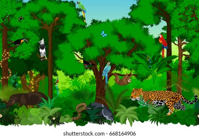 Vector seamless rainforest jungle background with animals