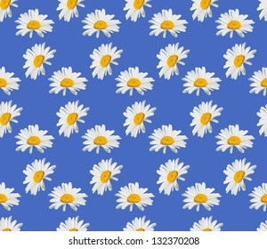 Vector seamless texture background for wrapping paper. Chamomile daisy flower decoration pattern design