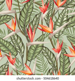 vector seamless tropical bird of paradise plant pattern with leaves, exotic flower blooming in summer. modern graphical floral background allover print. all elements are separate and editable.