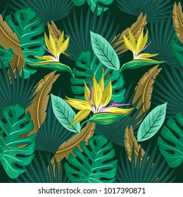 Vector seamless tropical pattern, vivid tropic foliage, with monstera leaf, palm leaves, bird of paradise flower. Pattern trend design.