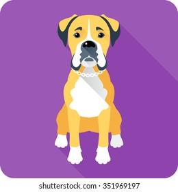 Vector serious dog Boxer sitting icon flat design