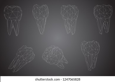 vector set of 3d teeth for dental medicine.