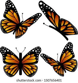 Vector set, 4 monarch butterflies