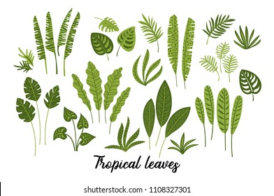 Vector set of abstract tropical leaves. Design elements.