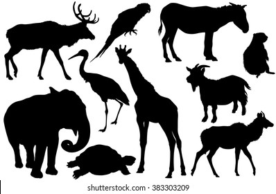 vector set of animal silhouettes (Elk, deer, Parrot, cockatoo, horse, pony, zebra, ground squirrel, elephant, Heron, giraffe, goat, turtle, Antelope)