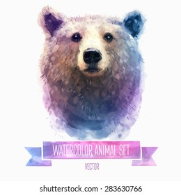 Vector set of animals. Bear hand painted watercolor illustration isolated on white background