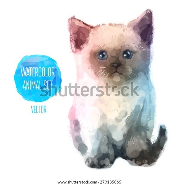 Zdarma kočičky