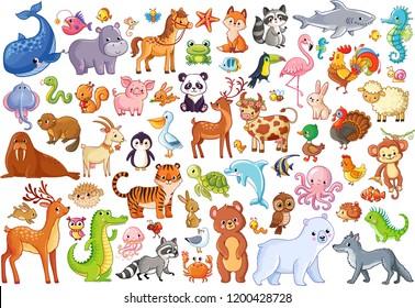 Vector set of animals. Home favorites. Mammals. Marine life. Illustration in cartoon style.