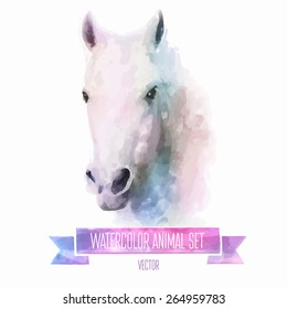 Vector set of animals. Horse hand painted watercolor illustration isolated on white background