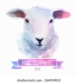 Vector set of animals. Sheep hand painted watercolor illustration isolated on white background