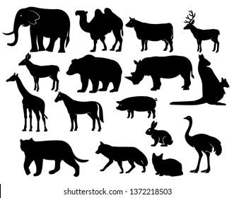Vector  Set of Animals Silhouettes. Elephant, Gondar, Giraffe, Ostrich, Kangaroo and other. - Vector