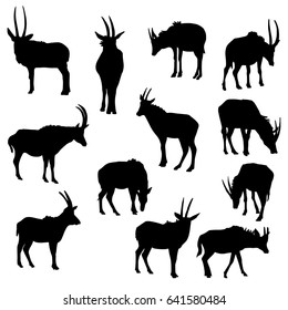 vector set of antelopes, hand drawn silhouettes of animals isolated at white background