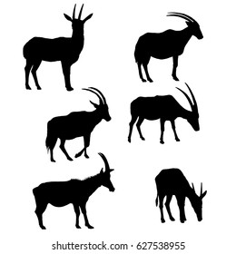 vector set of antelopes silhouettes, hand drawn animals isolated at white background