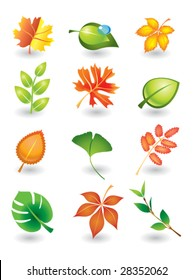 Vector set of autumn and summer leaves for design