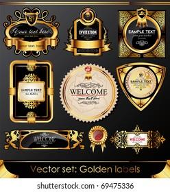 Vector set of beautiful black gold-framed labels