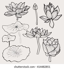 Vector set of Beautiful monochrome hand drawn lotus flowers and leaves. Sketch floral  collection in black and white style for coloring page.