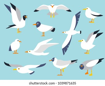 Vector set of beautiful seagulls in a flat style isolated on white background. Sea Gull, a beautiful bird. Cute bird in cartoon style. Cartoon atlantic seabird.