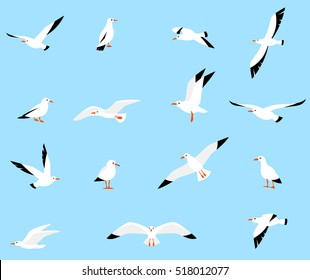 Vector set of beautiful seagulls in a flat style isolated on white background. Sea Gull, a beautiful bird. Cute bird in cartoon style.