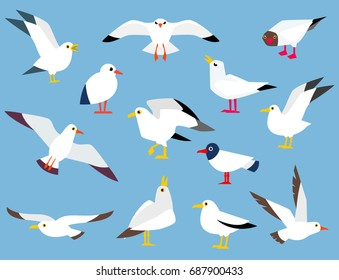 Vector set of beautiful seagulls in a flat style isolated on white background. Cartoon atlantic seabird.