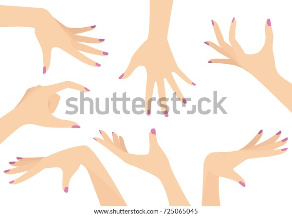 Vector set of beautiful woman hands isolated on white
