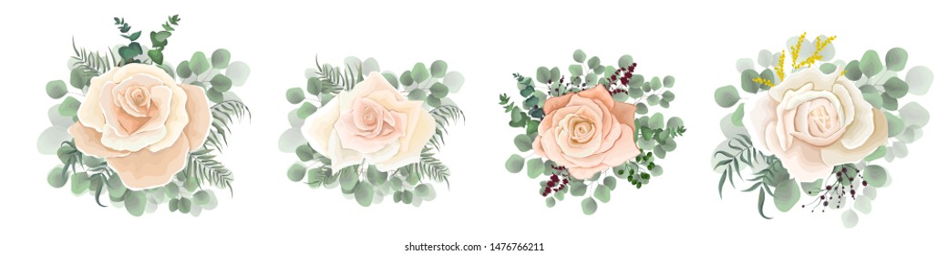 Vector set of beige roses, eucalyptus, berries of green leaves and plants. Flowers on a white background.