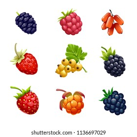 vector set of berries, fruit, ripe fruit, mulberry, BlackBerry, raspberry, unabi, strawberry, currant, cloudberry, fresh fruit, on white background,