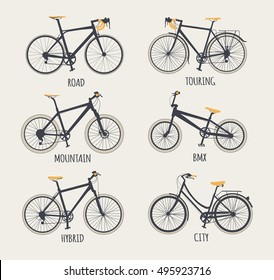 Vector set of bicycles in flat style. Guide of bike types. Poster with racing/ road bike, touring bike, mountain bike, BMX, hybrid and city bike.