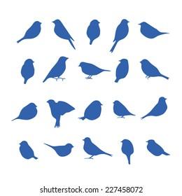 vector set of bird silhouettes.