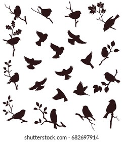 Vector set of birds and twigs. Decorative bird silhouette