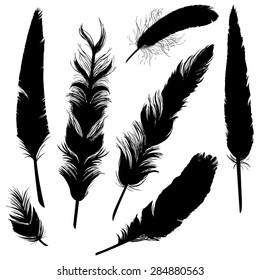 Vector Set of Black Plumage Silhouettes