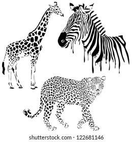 Vector set of black silhouette wild animals, zebra, leopard, giraffe