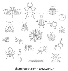 Vector set of black and white insects. Collection of isolated on white background monochrome bee, bumble bee, may-bug, fly, moth, butterfly, caterpillar, spider, ladybug, beetle, dragonfly