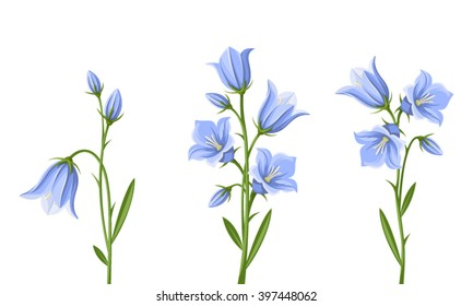 Bluebell flower images stock photos vectors shutterstock vector set of blue bluebell flowers isolated on a white background mightylinksfo