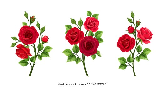 Vector set of branches of red roses isolated on a white background.