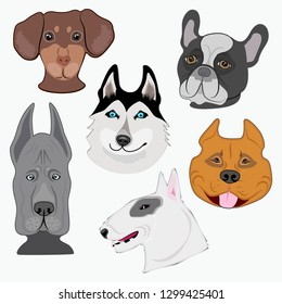 Vector set the breeds of dogs