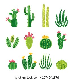 Vector set of bright cacti, aloe and leaves. Collection of exotic plants. Decorative natural elements are isolated on white. Cactus with flowers.
