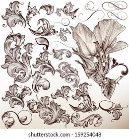 Vector set of calligraphic elements for design. Calligraphic vector