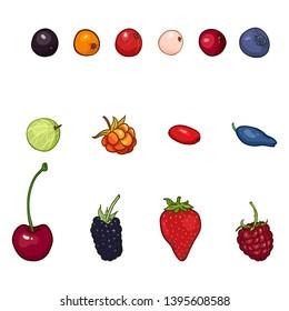 Vector Set of Cartoon Berries. Types of Berry.