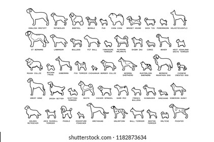 Vector Set Of Cartoon Dogs Isolated On White Background