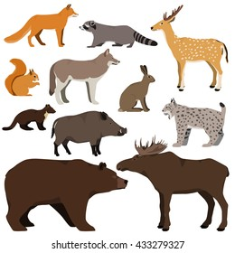 Vector set of cartoon forest animals. Brown bear, raccoon, squirrel, spotted deer, lynx, marten, wild boar, moose, wolf, fox, hare.