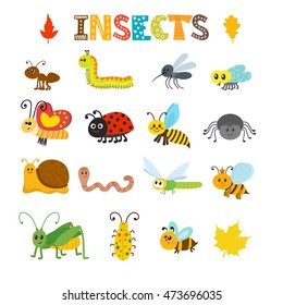 Vector set of cartoon insects. Colorful bugs collection. Vector illustration